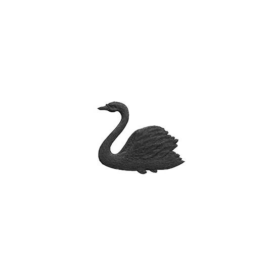 Black Dresden Swans ~ 9