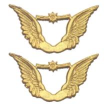 Gold Dresden Foil Angel Wings ~ 10