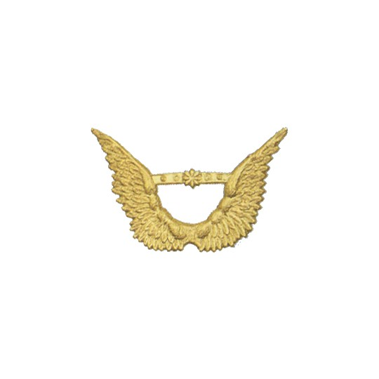 Gold Dresden Foil Angel Wings ~ 8