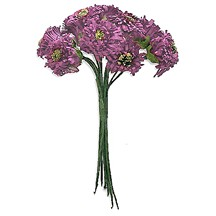 12 Light Purple Paper Asters