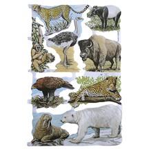 Wild Animal of the World Scraps ~ England