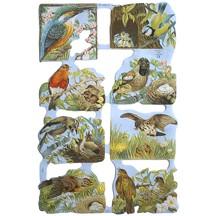 Springtime Birds Scraps ~ England