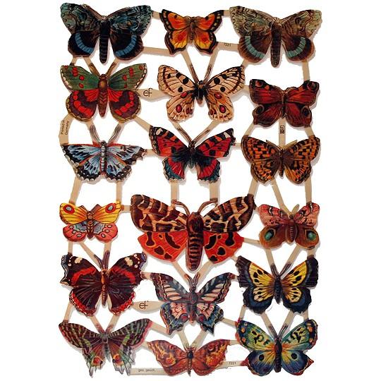 Beautiful Butterfly Scraps ~ Germany