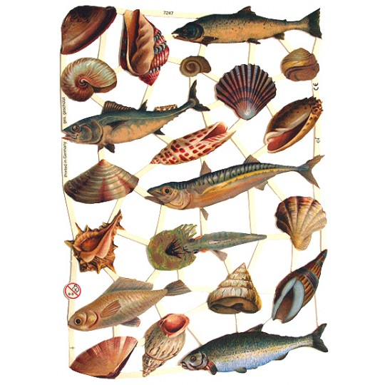 Fish & Seashells Scraps ~ Germany