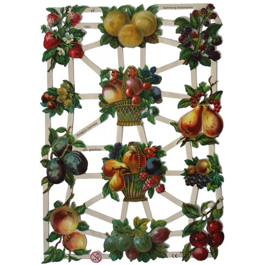 Summer Fruit Scraps ~ Germany