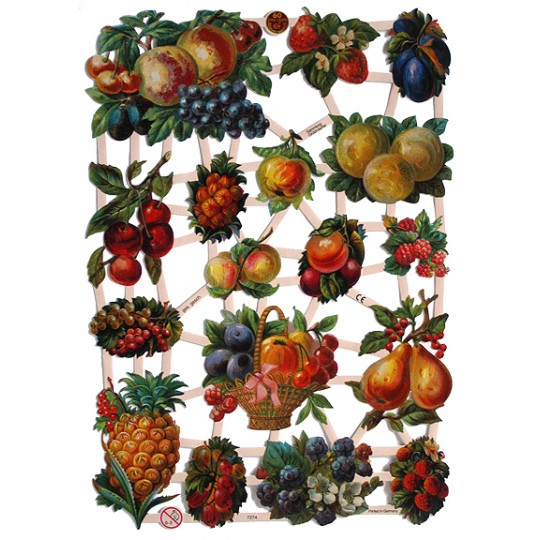 Exotic Fruits Scraps ~ Germany