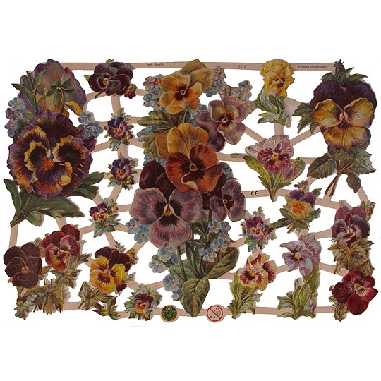 Pretty Pansy Scraps ~ Germany