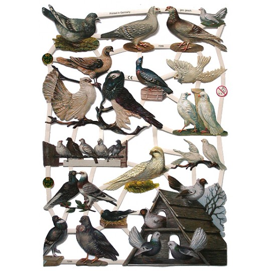 Domesticated Birds Scraps ~ Germany