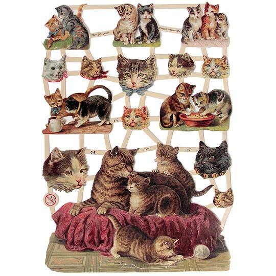 Mixed Kitty Cat Scraps ~ Germany