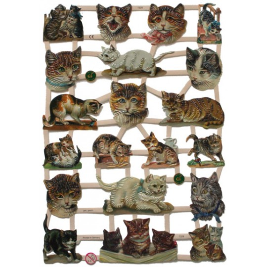 Kitty Cat Scraps ~ Germany