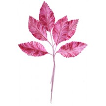 Sprig of Pink Ombre Velvet Leaves ~ Vintage Germany