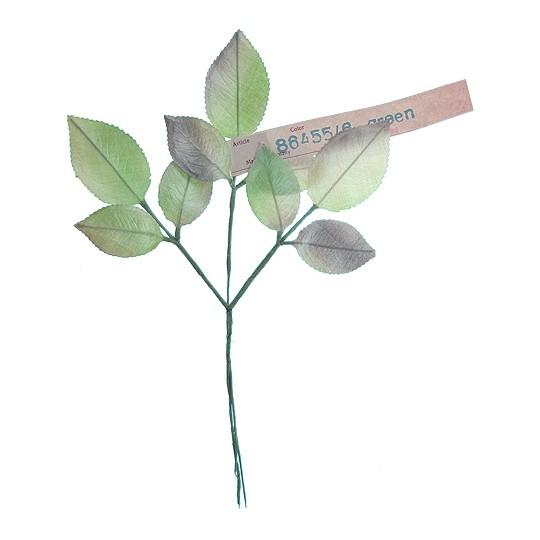 Sprig of Light Green Pearlized Rose Leaves ~ Vintage Germany