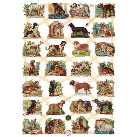 Assorted Dog Scraps ~ Germany ~ New for 2013