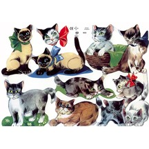 Whimsical Kitty Cat Scraps ~ England