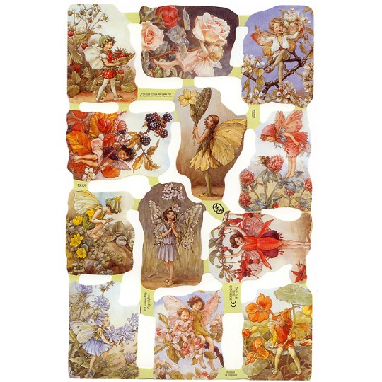 Mixed Flower Fairies Scraps ~ England