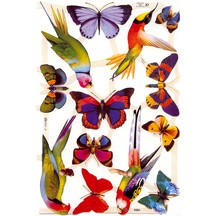 Colorful Bird & Butterfly Scraps ~ England