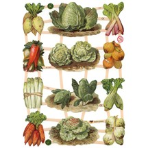 Mixed Garden Vegetables Scraps ~ Germany ~ New for 2012