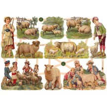Lambs and Children Scraps ~ Germany ~ New for 2014