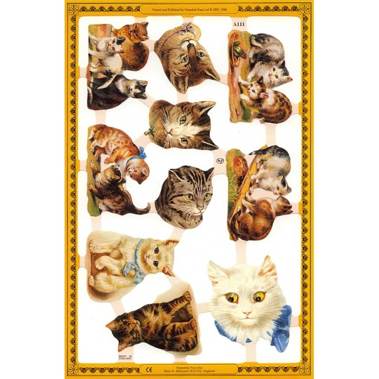 Mixed Tabby Cat Scraps ~ England