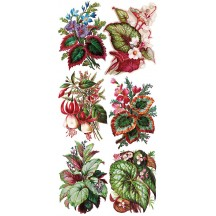 1 Sheet of Stickers Mixed Exotic Flowers