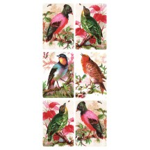 1 Sheet of Stickers Mixed Birds on Branches ~ Trade Card Style