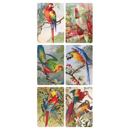 1 Sheet of Stickers Exotic Birds ~ Trade Card Style