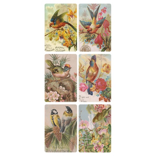 1 Sheet of Stickers Exotic Birds and Flowers ~ Trade Card Style