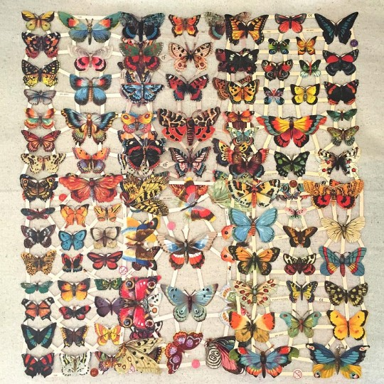 Butterflies Master Scrap Pack ~ 6 Assorted Sheets
