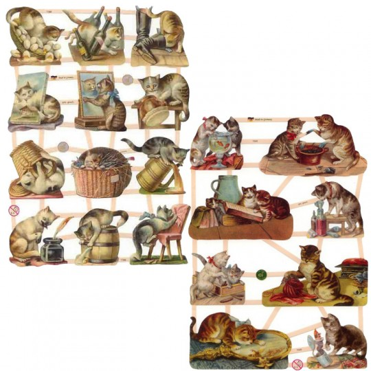 Cats and Kitties Master Scrap Pack ~ 8 Assorted Sheets