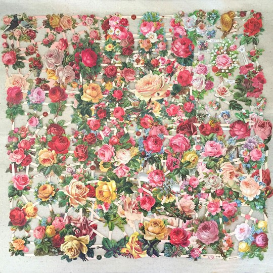 Roses Master Scrap Pack ~ 11 Assorted Sheets