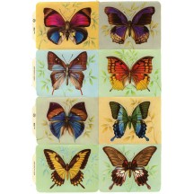Vintage MLP Butterfly Scraps ~ England