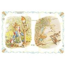 Large Beatrix Potter Tale of Peter Rabbit Scraps ~ England