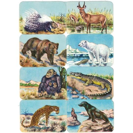 Rare Wild Animals Scraps ~ Vintage EAS ~ Germany
