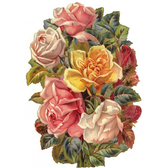 Large Cabbage Roses Scrap ~ Germany ~ New for 2016