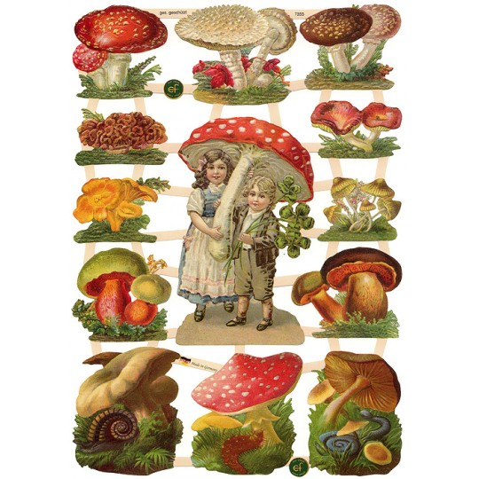 Charming Mixed Mushrooms Scraps ~ Germany ~ New for 2015