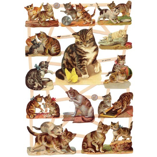 Kitty Cats Playing and Making Mischeif Scraps ~ Germany ~ New for 2015