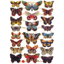Bold Specimen Butterflies Scraps with Glitter ~ Germany ~ New for 2016