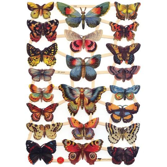 Bold Specimen Butterflies Scraps ~ Germany ~ New for 2016