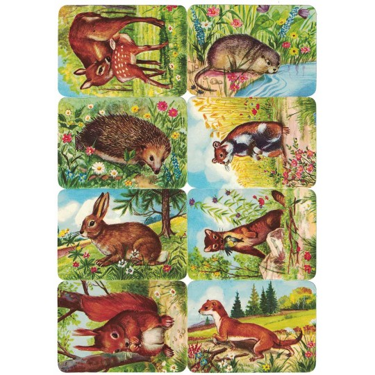 Rare Forest and Prairie Animals Scraps ~ Vintage Kruger ~ Germany
