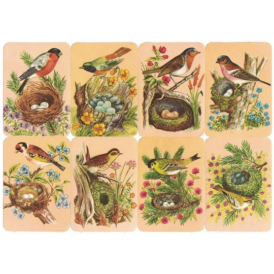 Birds in Nests Scraps ~ Vintage Kruger ~ Germany