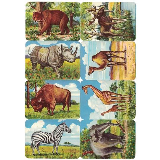 Rare Wild Animals Scraps ~ Vintage Kruger ~ Germany