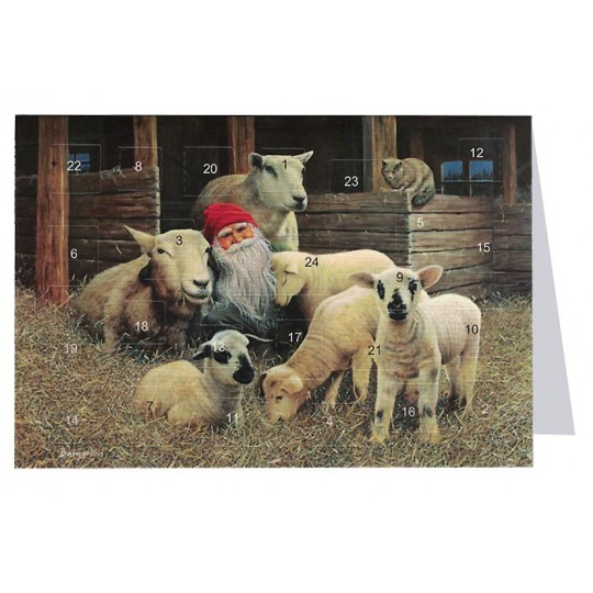 "Tomte Gnome with Sheep Advent Calendar Card from Sweden ~ 6-3/4"" x 4-1/2"""