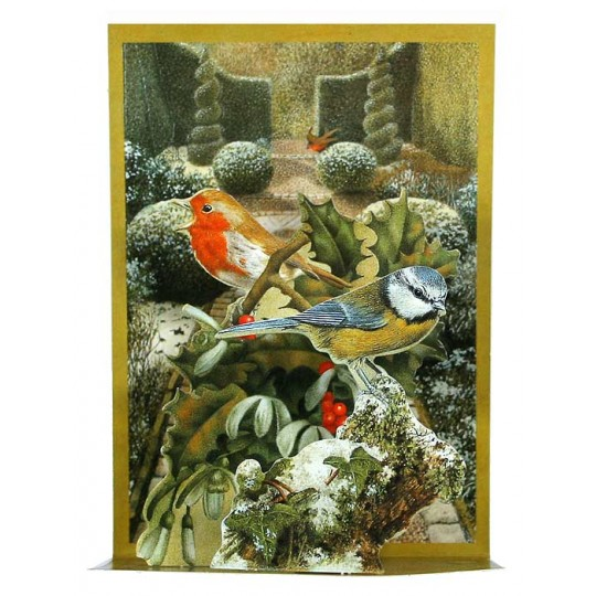 Pop-up Bird Garden Christmas Card ~ England