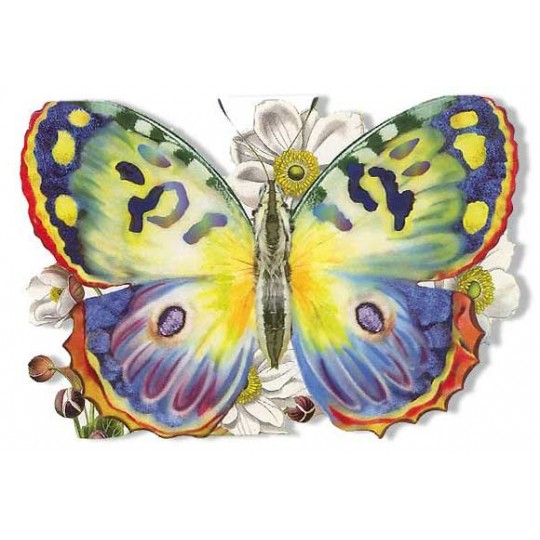 Die Cut Beautiful Butterfly Card ~ Germany