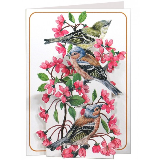 3-D Birds and Flowers Card ~ England