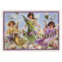 Large Purple Violets Flower Fairies Postcard ~ Germany
