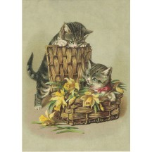 Cats with Daffodils XL Embossed Easter Postcard ~ Germany