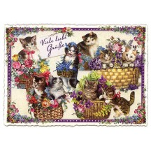 Large Cats and Flowers Postcard ~ Germany