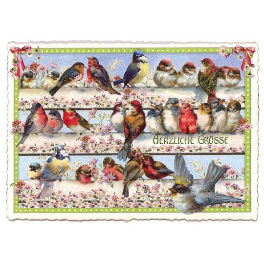 Large Birds and Flowers Postcard ~ Germany