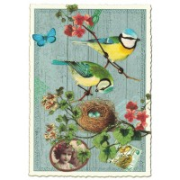 Blue Bird Collage Large Postcard ~ Germany